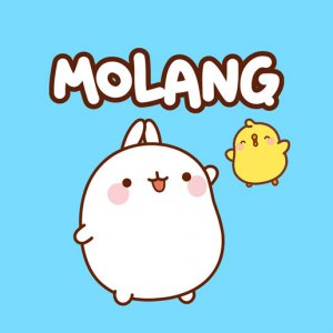 LicenceBulle-Molang